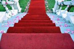 Roter Teppich 3 stockbild