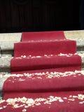 Roter Teppich - Ende der Hochzeit Stockbild