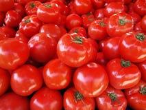 Roter Tomate-Hintergrund Stockbild