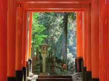 Roter Tortunnel in Kyoto Lizenzfreie Stockfotografie