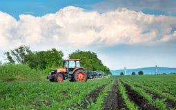 Roter Traktor, der Feld unter blauem Himmel kultiviert Lizenzfreies Stockfoto