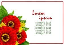 Roter und gelber Blumenblumenstrauß in einer Ecke und in einem Rahmen Lizenzfreies Stockbild