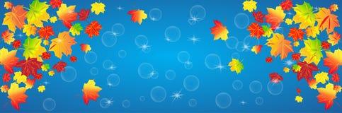 Roter und gelber Herbstlaub auf einem blauen Hintergrund Herbstlicher abstrakter Hintergrund, Panorama lizenzfreie abbildung