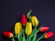 Roter und gelber Tulpenblumenstrauß des neuen Frühlinges blüht Nahaufnahmemakro auf Draufsicht des schwarzen Hintergrundes Stockfoto