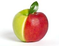 Roter und grüner Apfel lizenzfreies stockbild