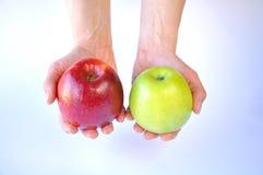 Roter und gr?ner Apfel in den H?nden auf wei?em Hintergrund lizenzfreie stockfotografie