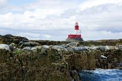 Roter und weißer Leuchtturm, Dichtungen auf Felsen Stockbilder