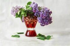 Roter Vase mit lila Blumen und gefallenen grünen Blättern Stockfotos