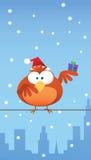 Roter Vogel mit Sankt-Hut Lizenzfreie Stockfotos