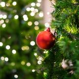 Roter Weihnachtsball auf dem Baum Lizenzfreie Stockfotos