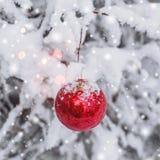 Roter Weihnachtsball, der an einer schneebedeckten Niederlassung in den Winterwaldfrohen Weihnachten und dem guten Rutsch ins Neu Stockfotografie