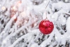 Roter Weihnachtsball, der an einer schneebedeckten Niederlassung im Winterwaldweihnachten und im guten Rutsch ins Neue Jahr hängt Lizenzfreies Stockfoto