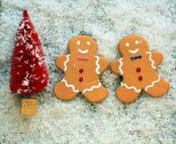 Roter Weihnachtsbaum im Schnee mit zwei Lebkuchenplätzchen lizenzfreies stockfoto