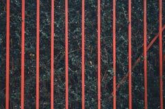 Roter Zaun auf der gr?nen Baumwand stockbilder