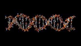 Roterande DNA stock video