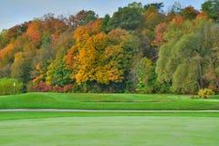Roterande färg för träd på de tillbaka niona Fotografering för Bildbyråer