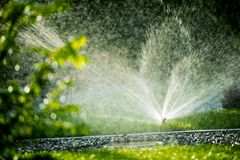 Roterande gräsmattaspridare Royaltyfri Fotografi