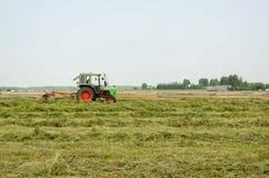 Roterande kratta klippt hö för traktor i fält Royaltyfria Foton
