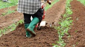 Roterande odlare som arbetar i trädgård arkivfilmer