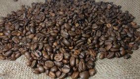 Roterende Achtergrond van Geroosterde Koffiebonen stock videobeelden