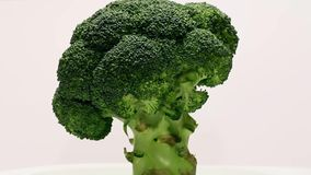 Roterende broccoli stock footage