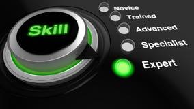 Roterende die knop met de woordvaardigheid in groen aan deskundige wordt gedraaid Stock Afbeeldingen