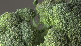 Roterende natte broccoli stock footage