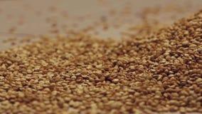 Roterende quinoa zaden stock video