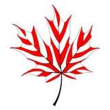Rotes Ahornblatt stock abbildung