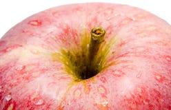 Rotes Apfeldetail, Wassertropfen Stockbild