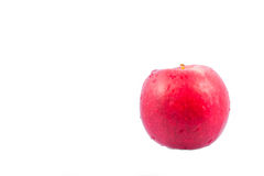 Rotes Apfelisolat lizenzfreies stockbild