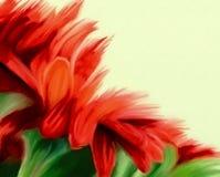 rotes Aquarellblumenmuster stock abbildung