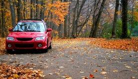 Rotes Auto in einem Park Stockfotos