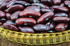 Rotes Bean lizenzfreie stockbilder