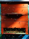 Rotes Bienenhaus Lizenzfreie Stockbilder