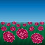 Rotes Blumenfeld auf Hintergrund des blauen Himmels Lizenzfreies Stockbild