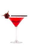 Rotes Cocktail Lizenzfreie Stockbilder