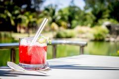Rotes Cocktail-Getränk Stockbild