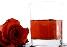 Rotes Cocktail und stieg Stockbild