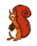 Rotes Eichhörnchen, das eine Mutter isst Lizenzfreie Stockbilder
