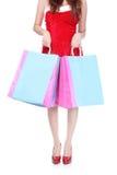 Rotes Einkaufenfrauenfahrwerkbein und -beutel Stockbilder