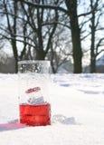 Rotes, eisiges Getränk im Schnee Stockbild
