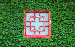 Rotes Fenster in den grünen Blättern Stockfotografie