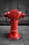 Rotes Feuer-Hydrant Stockfotos