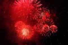 Rotes Feuerwerk stockfotografie