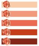 Rotes Geschenkkartenset Stockfotografie