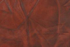 Rotes getragenes heraus Leder Lizenzfreie Stockfotos