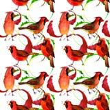 Rotes hauptsächliches Muster des Himmelvogels in wild lebenden Tieren durch Aquarellart Lizenzfreie Stockfotos