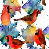 Rotes hauptsächliches Muster des Himmelvogels in wild lebenden Tieren durch Aquarellart Stockfotografie