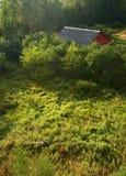 Rotes Haus auf Sumpf Stockbild